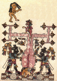 20140412004524-aztecas-el-nacimiento-de-la-mujer.jpg